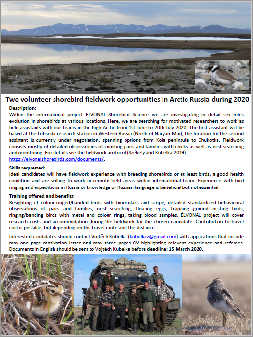 ElVONAL_Field assistant_Russia