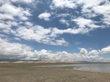 KP_Qinghai Lake habitat