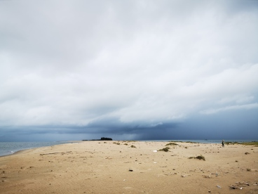 WFP_Paisha Island habitat