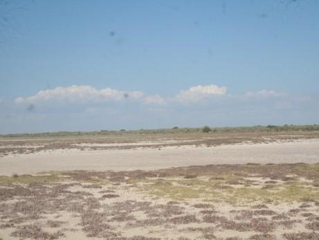 dry study site